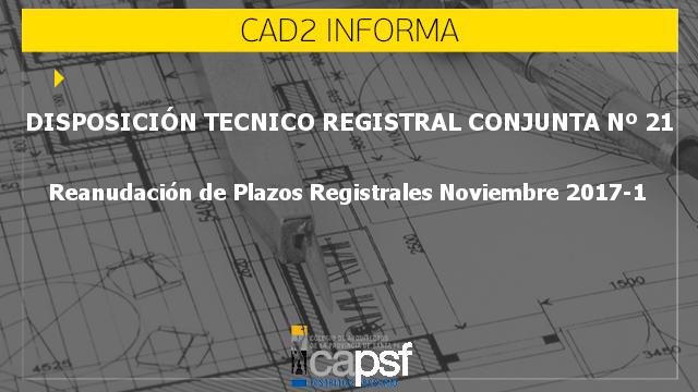 disposiciÓn tÉcnico registral conjunta nº 21 | CAd2